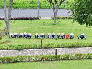 Hàng năm, Phú Mỹ Hưng chi hàng tỷ đồng để cải tạo, chăm sóc công viên cây xanh
