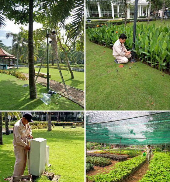 Mua nhà tại Phú Mỹ Hưng để ở để có thể tận hưởng không gian cây xanh trong lành